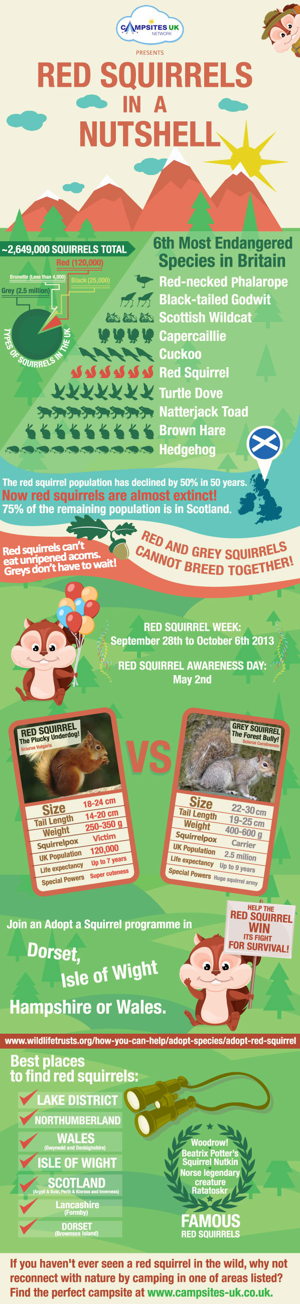 Red Squirrels in a Nutshell Infographic